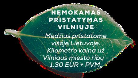 Medžius pristatome visoje Lietuvoje. Kilometro kaina už Vilniaus miesto ribų - 1,30 EUR + PVM.