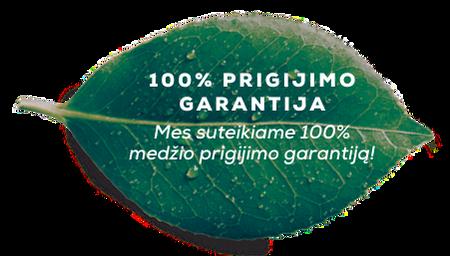 Mes suteikiame 100% medžio prigijimo garantiją!
