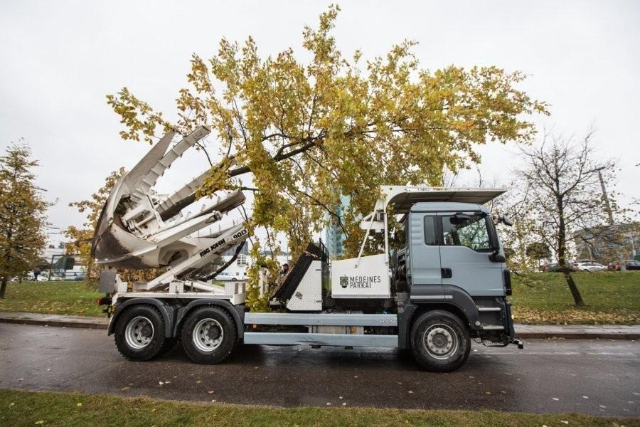 """Išsiprašiau iš """"Medeinės parkų"""" nuotraukos: įsivaizduokite, mašina įkiša tokius milžiniškus pirštus į žemę ir iškelia medį su visu žemių gumulu, tada viską perveža į kitą vietą ir gražiai įleidžia į duobę. Šaknys išlieka praktiškai nepažeistos!"""